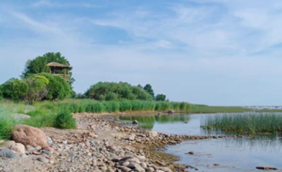 Kaltenes dabas taka ar putnu vērošanas torni